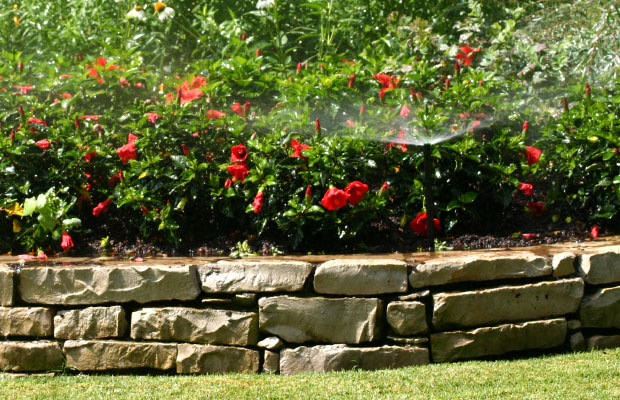 Affordable-Landscaping-Landscape-Irrigation